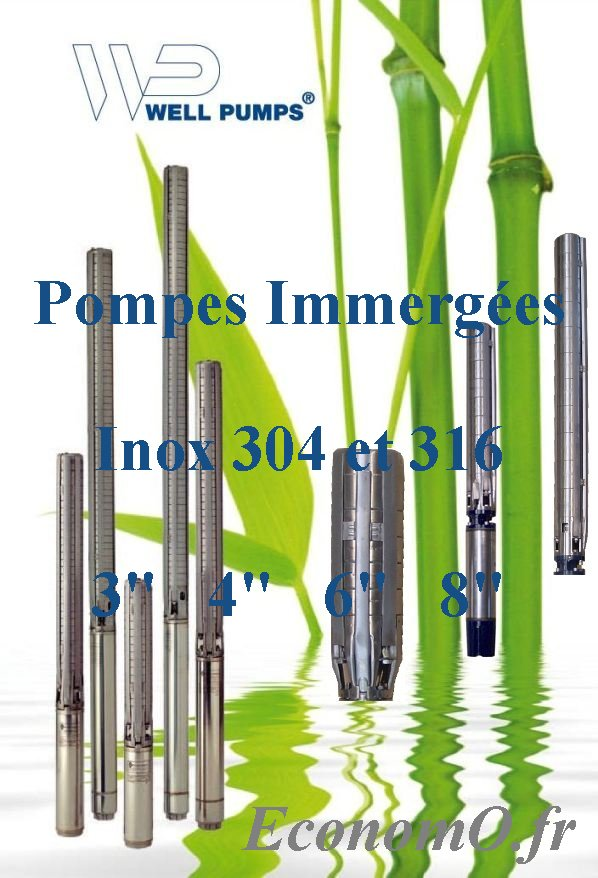 WELL PUMPS Pompes WELLPUMPS France